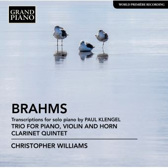 Johannes Brahms, Christopher Williams