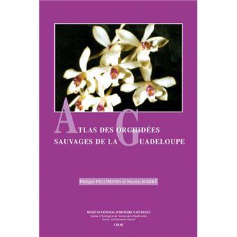 Atlas des orchidees sauvages de la guadeloupe
