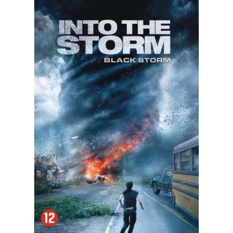 INTO THE STORM (DVD)(IMP)