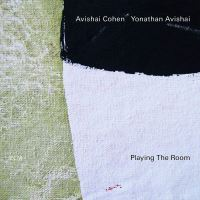 Playing The Room - CD