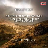 Grandes études de Paganini