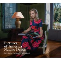 PICTURES OF AMERICA/2CD