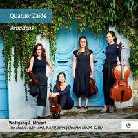 Quatuor zaide amadeus