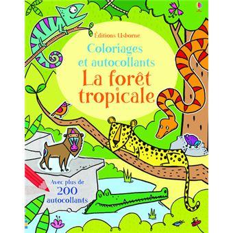La forêt tropicale - Coloriages et autocollants