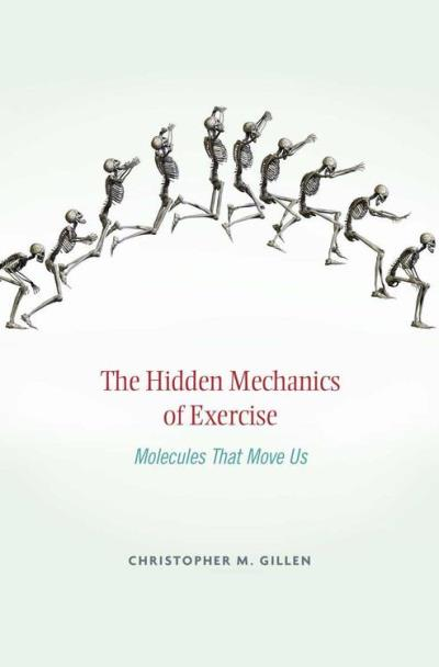 Hidden mechanics of exercise