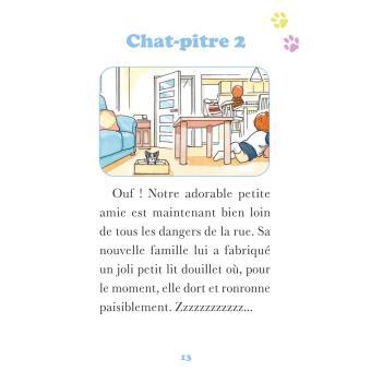 Coloriage Une Vie De Chat.Chi Une Vie De Chat Coffret Avec Cahier D Activites Et Cahier De