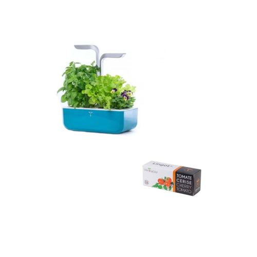 Potager Véritable Smart Teal Blue + Recharge Lingot Tomate Cerise
