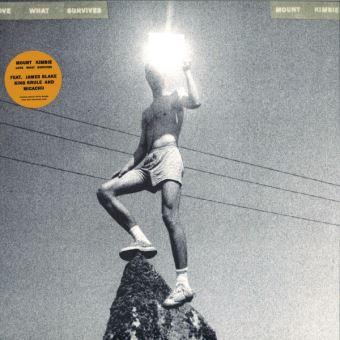 Love What survives 2 LP