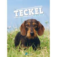teckel datant culture philippine et les traditions datant