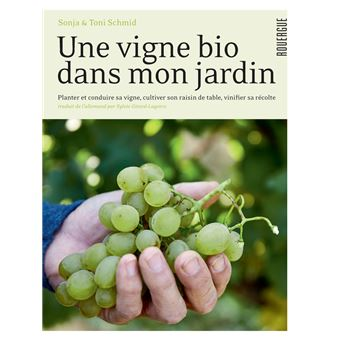 Une vigne bio dans mon jardin planter conduire sa vigne Planter vigne raisin de table