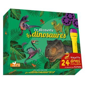 Je découvre les dinosaures - coffret avec lampe magique