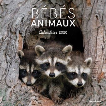 Calendrier 2020 Animaux.Calendrier Mural Bebes Animaux 2020