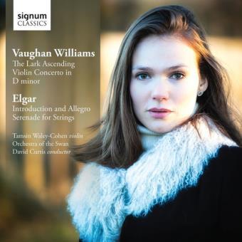 Konzert Für Violine & Streicher