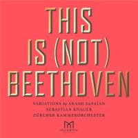 This Is Not Beethoven