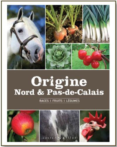 Origine Nord et Pas-de-Calais