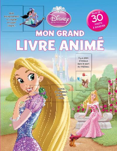 Disney Princesses - Livre flap : Les princesses