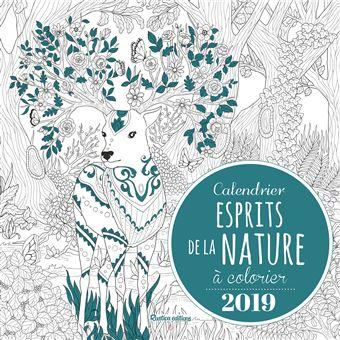Coloriage Feu De Foret.Calendrier 2019 Esprits De La Nature A Colorier Broche Marica