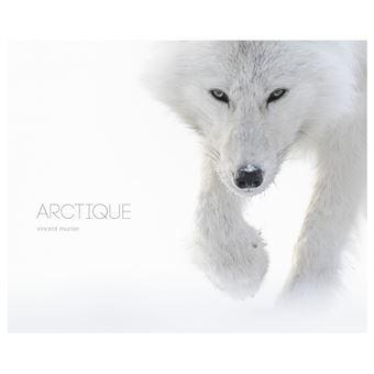 Résultats de recherche d'images pour «Arctique»
