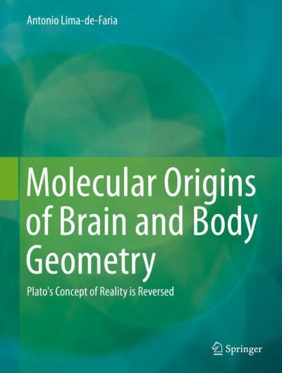 Molecular origins of brain and body geometry