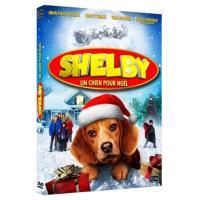 Shelby DVD