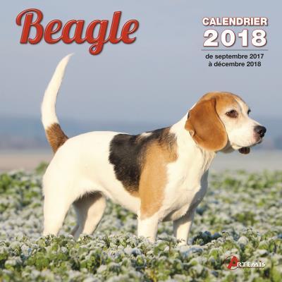 Calendrier 2018 Beagle