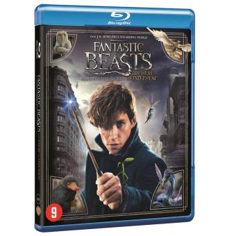 Fantastic Beasts and where to find them/ les Animaux Fantastiques