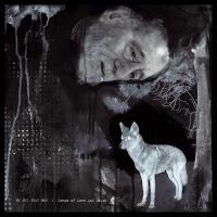 Songs of love and death Edition Deluxe Inclus 2 titres bonus et un livret de 24 pages