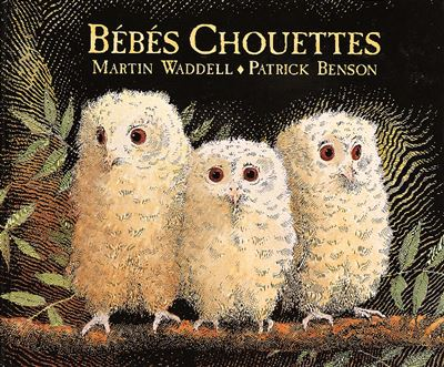 Bebes chouettes