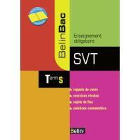 SVT Term S