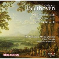 Beethoven's Heroic Diptych