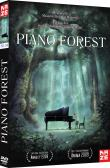 Piano Forest - Edition Simple