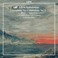 Symphonie No.1 ∙ Sinfonietta No.2 : Musica sinfonica