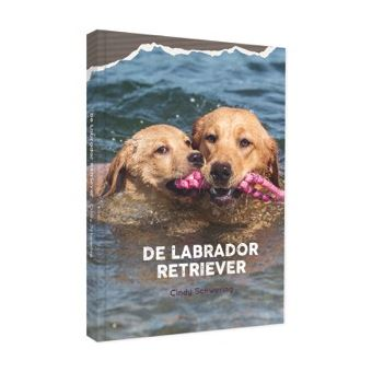 De Labrador Retriever