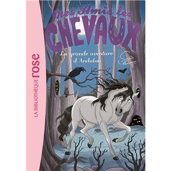 Mes amis les chevaux Sophie ThalmannMes amis les chevaux 21 - La grande aventure d'Andalou