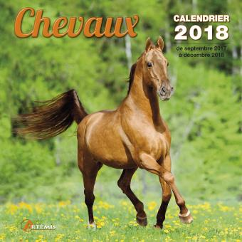 image cheval 2018