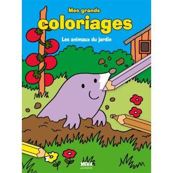Les animaux du jardin, mes grands coloriages