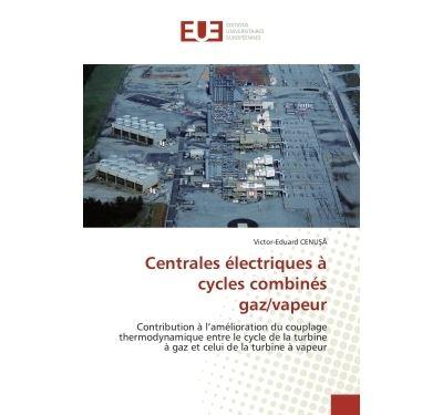 Centrales électriques à cycles combinés gaz/vapeur