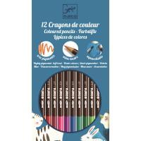 12 CRAYONS AQUARELLE - CLASSIQUE