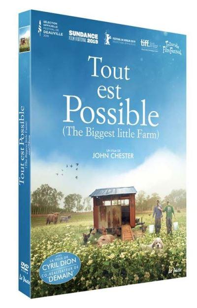 dvd du film Tout est possible