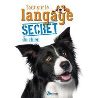 Tout sur le langage secret du chien