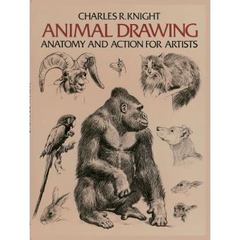 Dover anatomy for artists arts et culture collection dover anatomy animal drawing anatomy and action for artists ebook fandeluxe Choice Image