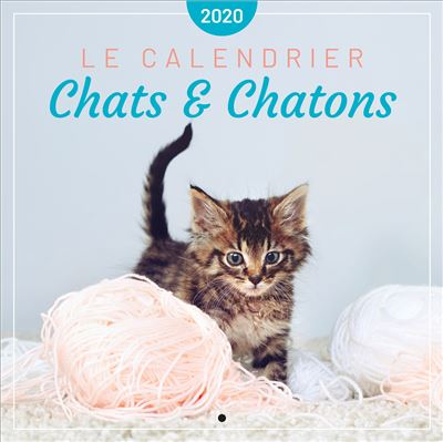 Le calendrier des Chats & Chatons 2020