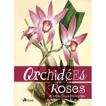 Orchidées, roses et autres fleurs fascinantes