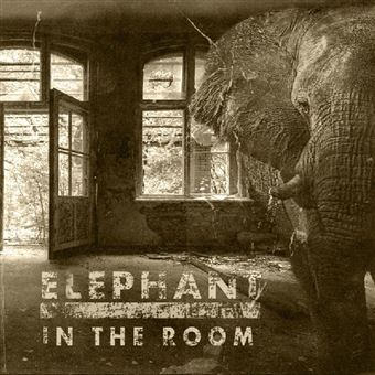 Elephant In The Room - Vinilo