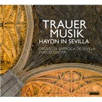 HAYDN A SEVILLE MUSIQUE F/DOYLE