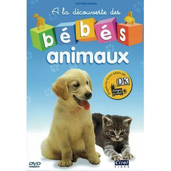 Bébés Animaux A La Découverte Des Bébés Animaux Dvd Zone 2 Achat Prix Fnac