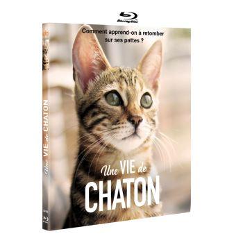 Une vie de chaton Blu-ray