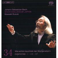 Cantatas vol.34