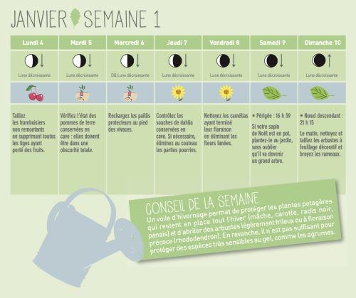 Calendrier Lunaire 2021 Jardinage 10 MEILLEURES IMAGES DU TABLEAU CALENDRIER DE JARDINAGE EN
