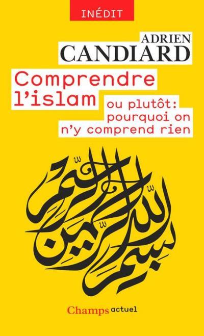 Comprendre l'islam - ou plutôt - Pourquoi on n'y comprend rien - 9782081388994 - 5,99 €